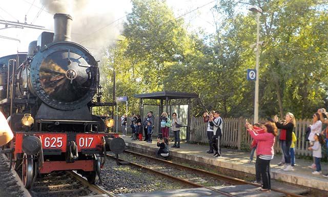 locomotiva a vapore per il carnevale di Ronciglione