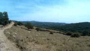 escursione sul monte Acetino a Tolfa con Sterrando bike