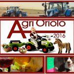 Agrioriolo è la fiera dell'agricoltura di Oriolo Romano