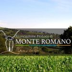 Santa Corona e Sant'Isidoro: festa patronale a Monte Romano (2017)