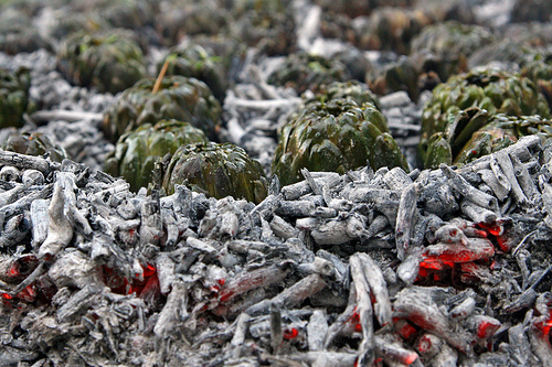 carciofi alla matticella ricetta di Velletri