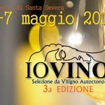 Io Vino: assaggi di vini autoctoni nel castello di Santa Severa