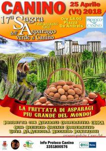 manifesto della sagra dell'asparago di Canino 2018