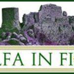 logo di Tolfa in fiore