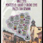 degustazioni di vini per il 2 giugno a Lariano con Vinea 2018