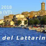 sagra del Lattarino di Marta 2018