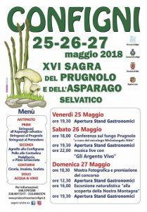 Sagra del prugnolo e dell'asparago selvatico 2018 a Configni