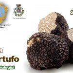 Festa del tartufo e dei prodotti tipici locali Blera 2018