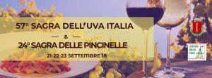 Sagra dell'uva Italia e sagra delle pincinelle Colonna (RM) 2018