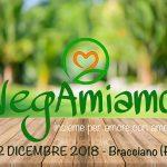 festival vegano Bracciano 2018