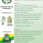 programma della festa di Sant'Antonio Manziana 2019