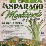 Sagra degli asparagi Montopoli Sabina 2019