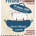 sagra della pecora Montasola 2019