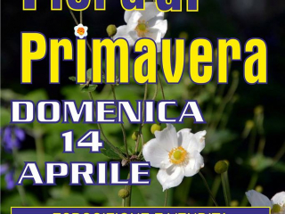Fiera di Primavera Cisterna di Latina 2019