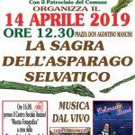 Sagra dell'asparago Torrita Tiberina 2019