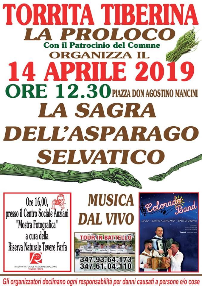 Sagra dell'asparago selvatico 2019 Torrita Tiberina (RM)