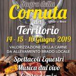locandina della festa della cornuta 2019