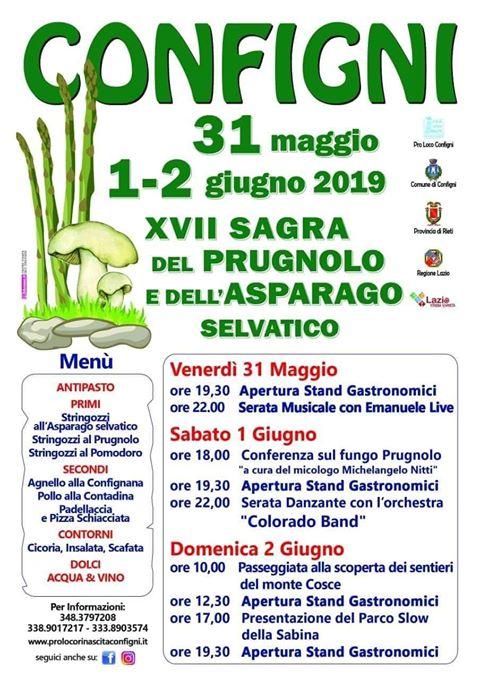 Sagra del prugnolo e dell'asparago Configni 2019