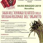 sagra degli asparagi e rassegna dell'organetto Marcellina 2019